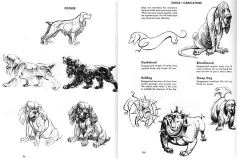 digital sketchbook cats  dogs reference