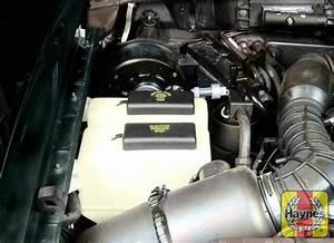 Ford Ranger  1994 - 2009  3 0 V6 - Fluid Level Checks