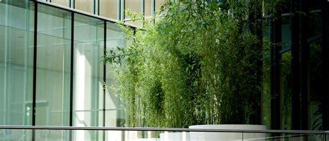 Garten Miete Pflanzen pflanzen mieten