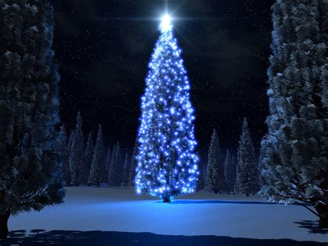 blue and christmas tree christmas snow trees backgrounds free christian wallpapers