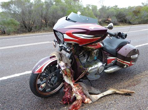 Motorcycle Accident Photos Graphic