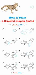 How To Draw A Bearded Dragon Lizard In 2020