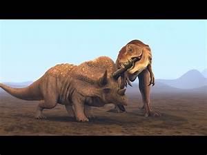 Tyrannosaurus Rex Vs Triceratops 3d Animation