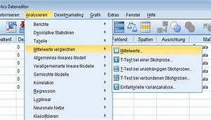 Variable Berechnen Spss : univariate statistik in spss novustat statistik beratung ~ Themetempest.com Abrechnung