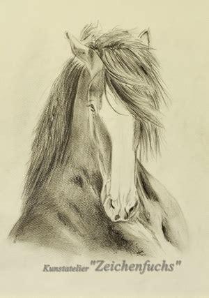 shire horse portraits des ateliers zeichenfuchs