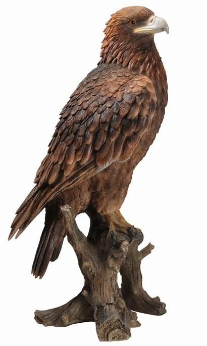 Eagle Golden Vivid Arts Ornament Garden Birds
