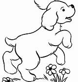Dog Rollie Coloring Puppy Pound sketch template