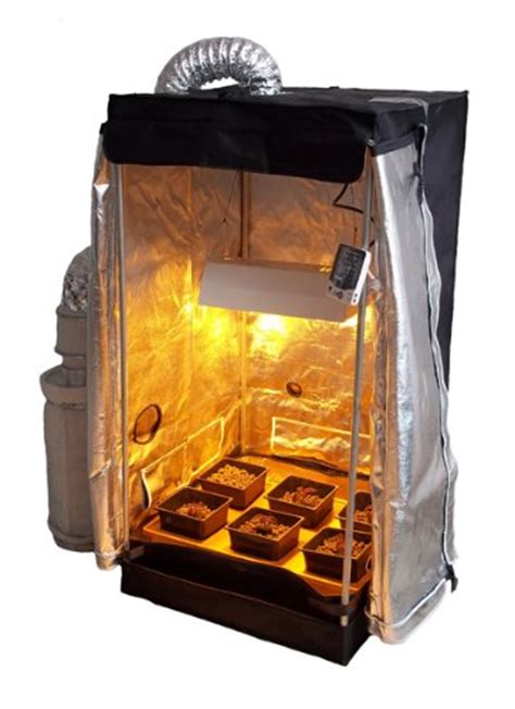 the best grow tent kit for the moneycollege of cannabis