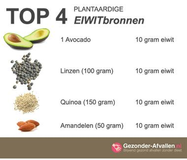 wat is goed voor cholesterol