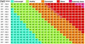 Ideal Height And Weight Chart Female Are You Obese Overweight Use This Bmi Calculator Chart