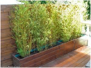 bac a bambou exterieur shamwerks terrasse project terrasse project bacs 224 bambous