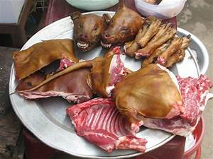Is It Legal To Eat Dogs In Kenya? Find Out - Mpasho News