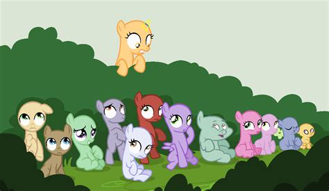 Foal Bases On Mlp-bases