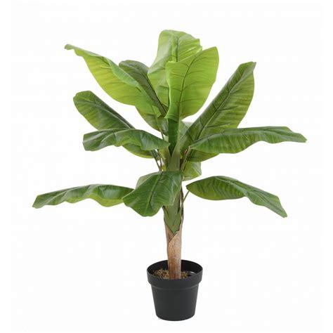 culture bananier en pot bananier artificiel tree