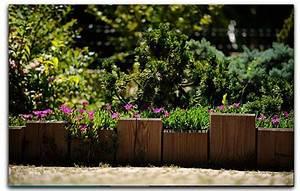 attrayant quelles plantes pour jardin zen 8 bordure With quelles plantes pour jardin zen
