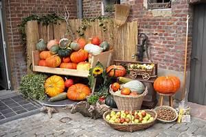 Fruits De Septembre : fruits et l gumes d 39 octobre le retour des figues des endives et du potimarron ~ Melissatoandfro.com Idées de Décoration