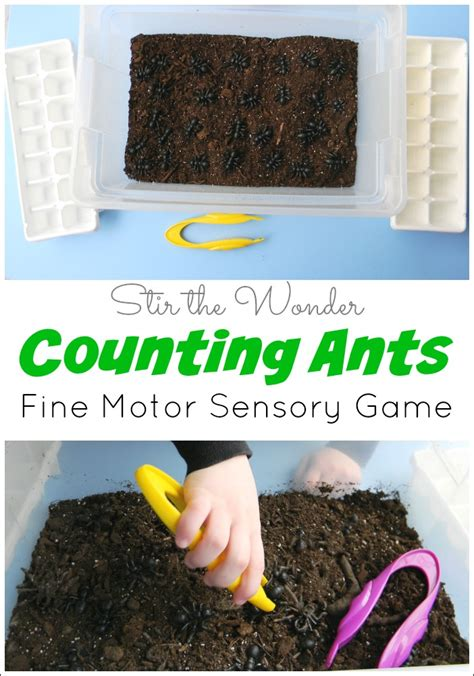 counting ants motor sensory stir the 811 | Counting Ants 1