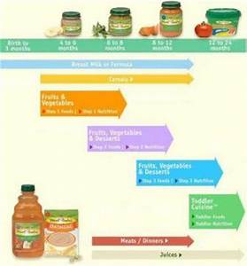 Learn About The Introduction Of Baby Food Chart Newborn