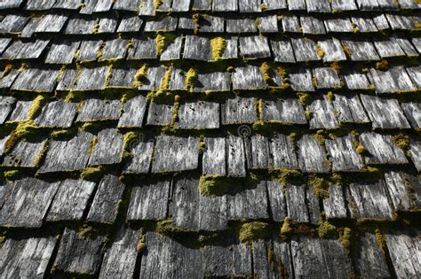 Roof Shingles Stock Image. Image Of Wood, Damp, Shakes How To Clean Shingle Roof Fiddler On The Broadway Roofing Contractor Insurance What Is Tpo Material Spray Coating For Shingles Metal Snow Stops Outlet Local Contractors
