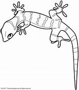 Gecko Coloring Printable Pages Lizard Getcolorings sketch template