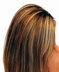 Dark Brown Hair Color with Blonde Highlights