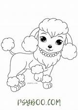 Poodle Coloring Dog Charming sketch template