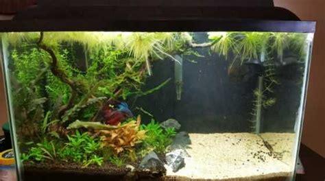 wow  cool fish tank decoration ideas   copy