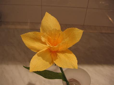 carta fiori dalla a allo zucchero fiori di carta crespa narciso