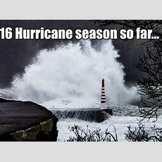 Tampa Bay, Florida Weather  Wftstv Abcactionnewscom