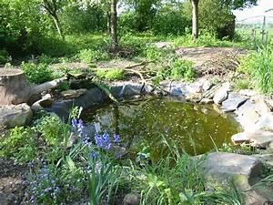 installer votre bassin de jardin terre et jardin terre With photo bassin de jardin