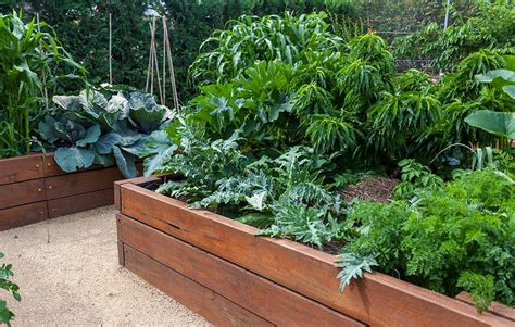 Organic Raised Garden Beds Plans how to plan a pretty and productive vegetable garden