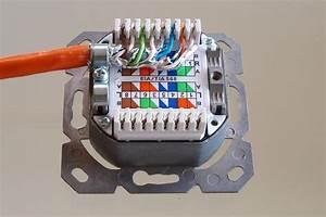Ligawo 2fach Netzwerkdose Cat 6A APUP Produkttest24   Test und Rezensionen zu Elektronik