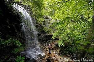 Coffee Pot Falls Ouachita National Forest