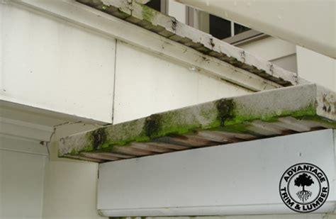 Trex Decking Problems 2010 Composite Decking Reviews Advantagelumber Decking Page 2