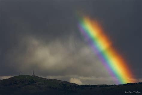 arc en ciel perpignan ces 233 tudes qui veulent expliquer l homosexualit 233