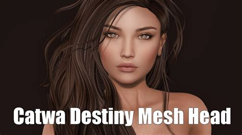Catwa Destiny Basic Female Mesh Head In Second Life