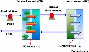 Schematic Diagram Of The Hybrid Fo U2013ro System