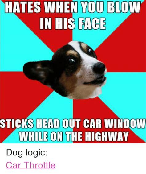 Dog Logic Meme - 25 best memes about logic windows head and dogs logic windows head and dogs memes