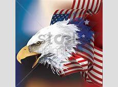 Bald eagle with flag design Vector Image 1552956