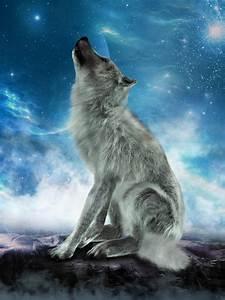 White Wolf Howling Moon Illustration Stock Photo - Image ...