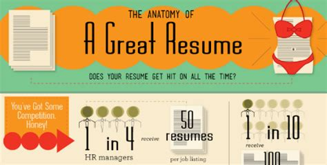 facts facts facts the anatomy of a successful resume