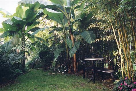 Mein Garten 2