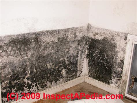 mold proof drywall mold resistant drywall is the quot mold resistant drywall quot a