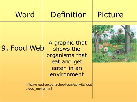 cuisines meaning food chain and web power point 2 03