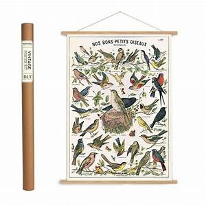 Petits Oiseaux Wrapping Paper    Poster