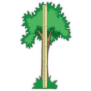 pediatric height chart pedia pals 100108
