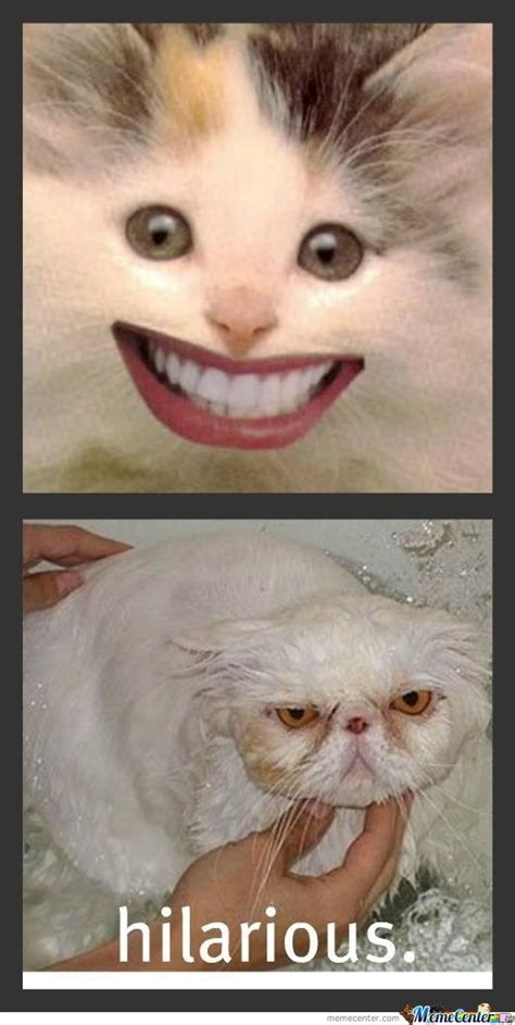 Unhappy Meme - unhappy memes image memes at relatably com