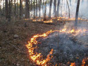 smoke   prescribed fire produce compasslive