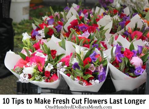 Make Cut Flowers Last Longer by 10 Tips To Make Fresh Cut Flowers Last Longer