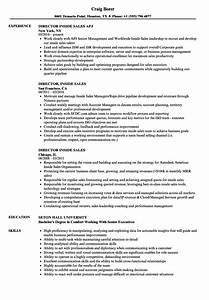 stunning the best sales resumes ever gallery example With best sales resume ever
